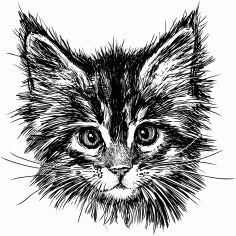 Hand Drawn Cat Free CDR Vectors File